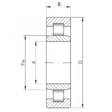 25 mm x 62 mm x 17 mm  ISO NU305 cylindrical roller bearings