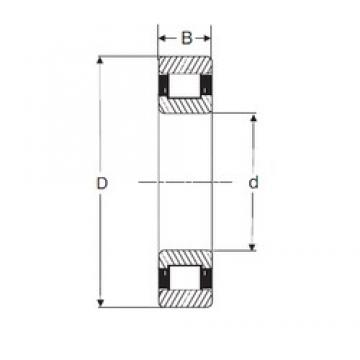 45 mm x 85 mm x 23 mm  SIGMA N 2209 cylindrical roller bearings