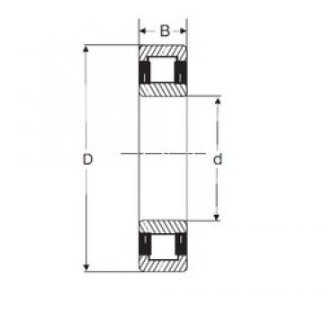 30 mm x 62 mm x 16 mm  SIGMA NU 206 cylindrical roller bearings