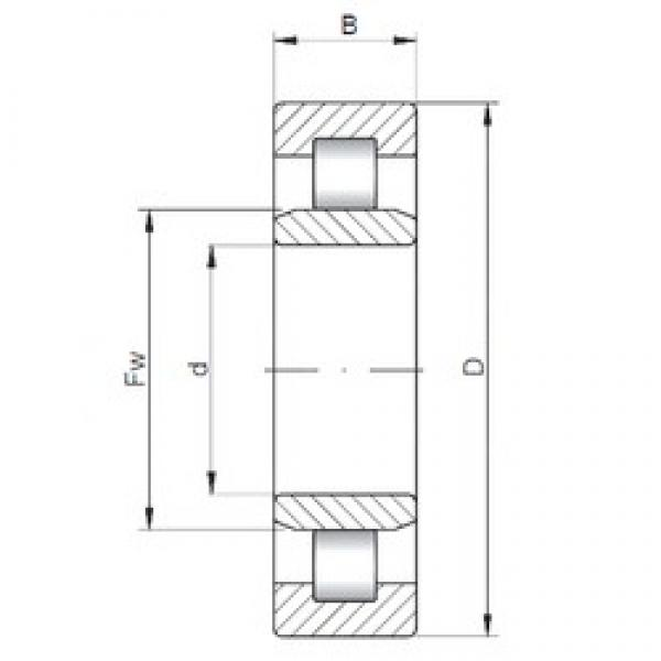 25 mm x 62 mm x 17 mm  ISO NU305 cylindrical roller bearings #3 image
