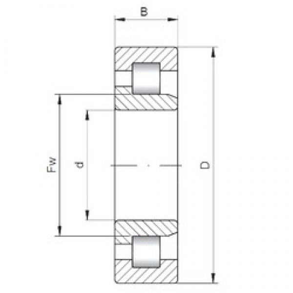 85 mm x 180 mm x 41 mm  ISO NJ317 cylindrical roller bearings #3 image