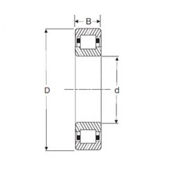 25 mm x 52 mm x 15 mm  SIGMA NUP 205 cylindrical roller bearings #3 image